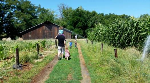 4-farm-rehab-walk-to-barn-web